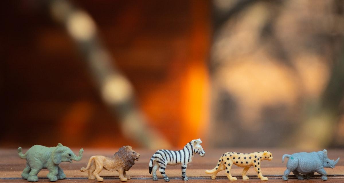 wcl-aprender-los-animales-en-ingles